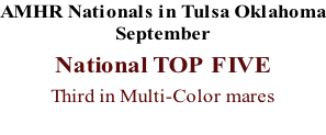 AMHR Nationals in Tulsa Oklahoma September  National TOP FIVE  Third in Multi-Color mares